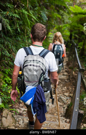 Couple hiking through tropical forest on the Mt Kinabalu summit trail. Kinabalu National Park, Sabah, Borneo, Malaysia. - Stock Photo