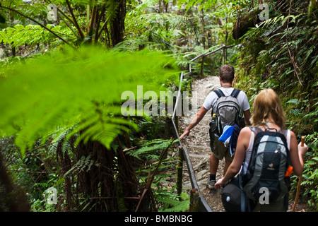 Couple hiking through tropical forest on the Mt Kinabalu summit trail. Kinabalu National Park, Sabah, Borneo, Malaysia - Stock Photo