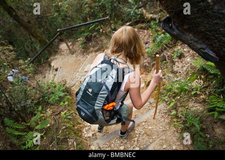 Hiker on the Mt Kinabalu summit trail. Kinabalu National Park, Sabah, Borneo, Malaysia. - Stock Photo