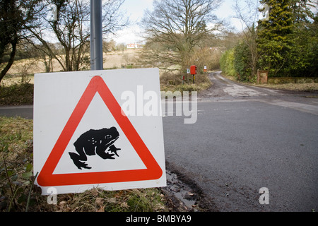 A triangular road sign warning of toads crossing, Surrey, England. - Stock Photo