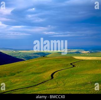 Road through hilly landscape, Cezallier, Puy de Dome, Auvergne, France, Europe