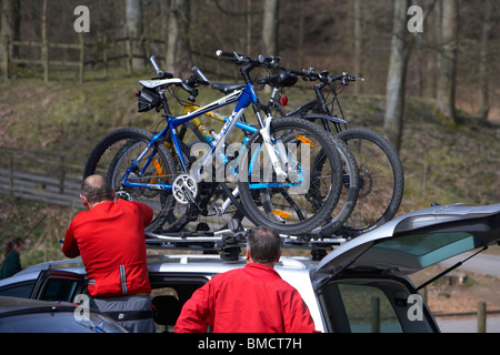 cyclist securely fastens mountain bikes on a roofrack on a car in a forest carpark derbyshire england uk - Stock Photo