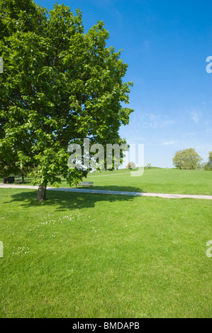 London. Primrose Hill, Regent's Park. Hampstead. - Stock Photo
