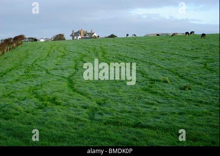 Bushmills, County Antrim, Northern Ireland - Stock Photo