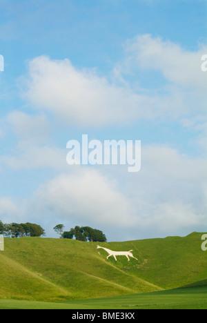 Famous white horse at Cherhill downs near Calne Wiltshire England UK GB EU Europe - Stock Photo