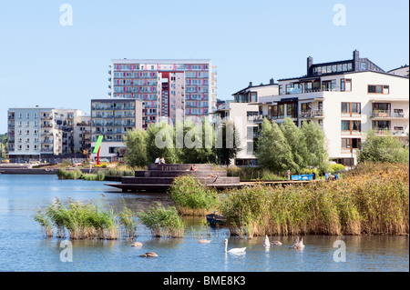 Reeds in river near city - Stock Photo