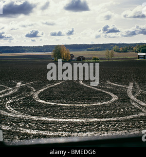 View of tyre tracks in field, elevated view - Stock Photo