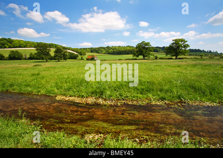 Hambleden Brook, a chalk stream in the Chilterns, flowing through a farmers field in Mill End, Buckinghamshire, - Stock Photo