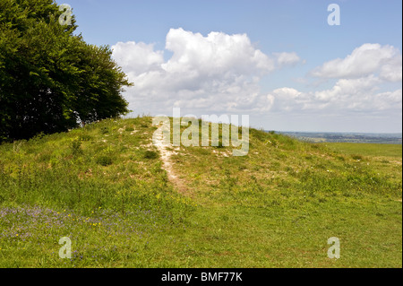 Bronze age Neolithic Long Barrow burial ground on Whiteleaf hill in the Chilterns Bucks UK - Stock Photo