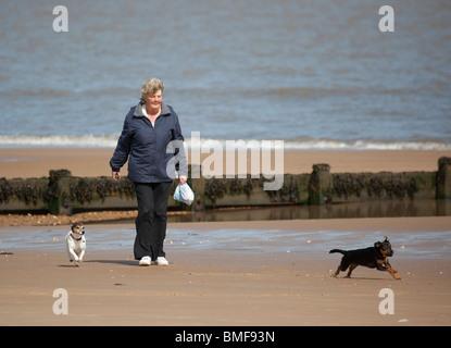 woman walking  and dog running on beach - Stock Photo