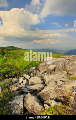 Dolly Sods Wilderness Scenic Area, Hopeville, West Virginia - Stock Photo