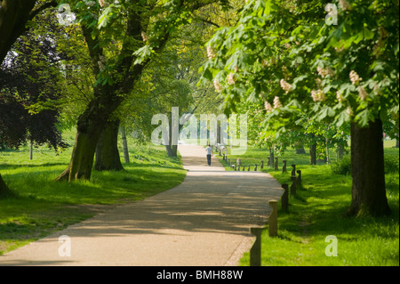 Regent's Park, London, England, UK. - Stock Photo