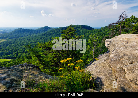 View from Indian Fort Lookout in Berea College Forest in Madison County, Kentucky - Stock Photo