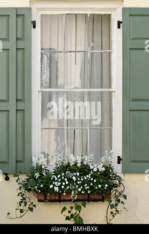 Details of Window, Shutters and Window Box with Flowers on Historic Home in Charleston, South Carolina - Stock Photo