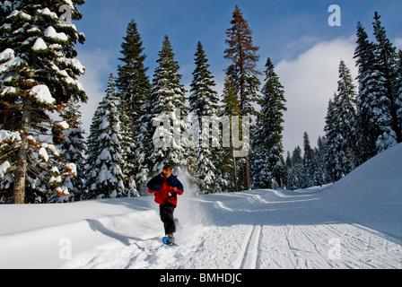 snowshoes, sport, Winter scene, North Lake Tahoe, California, USA - Stock Photo