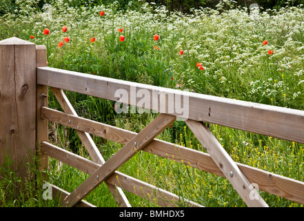 Wooden five-barred gate into a field of cow parsley and wild red poppies in typical English summer countryside. - Stock Photo