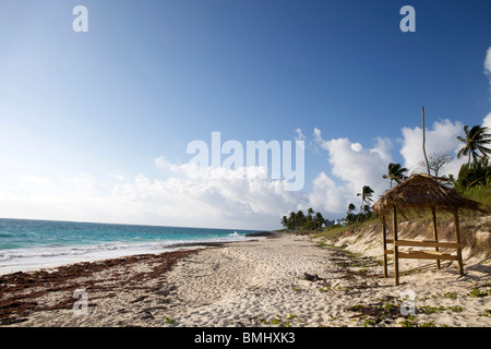 A beautiful windswept, but sunny beach with a grass hut and palm trees on Hope Town, Elbow Cay in the Abacos, Bahamas. - Stock Photo