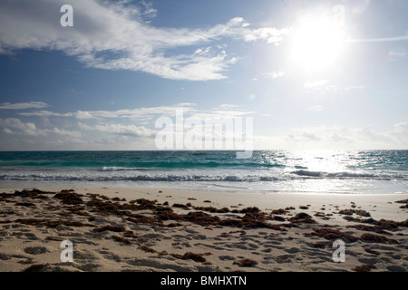 A beautiful windswept, but sunny beach with seaweed in Hope Town, Elbow Cay in the Abacos, Bahamas. - Stock Photo