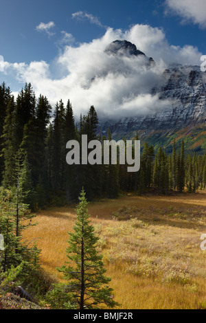 Epaulette Mountain, Icefields Parkway, Banff National Park, Alberta, Canada - Stock Photo