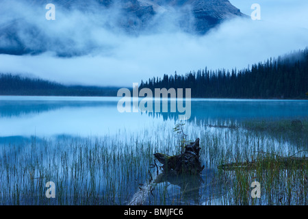 Emerald Lake at dawn, Yoho National Park, British Columbia, Canada - Stock Photo