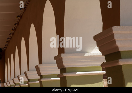 Historic town of Dolores Hidalgo, Colonnade, Province of Guanajuato, Mexico - Stock Photo