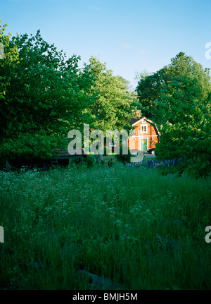 View of summer cottage - Stock Photo