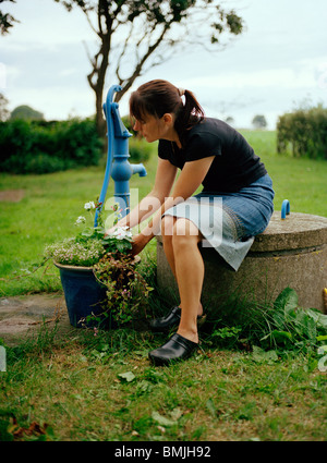 Woman planting flower in pot - Stock Photo