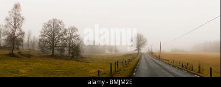 Scandinavian Peninsula, Sweden, Skane, View of empty country road through landscape - Stock Photo
