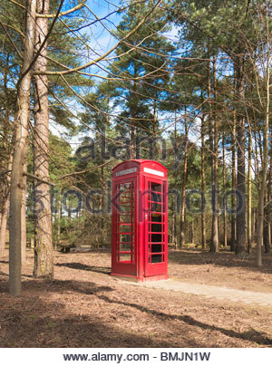 Red telephone box in woods - Stock Photo