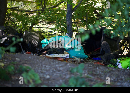 dumped rubbish in woods by side of a road - Stock Photo