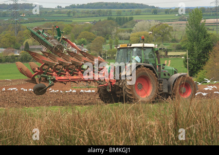 Tractor Ploughing Field, Followed by birds. Dorset, England. - Stock Photo