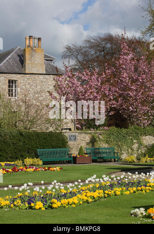 Colourful spring time in park with cherry blossom and flowerbeds, Scotland - Stock Photo