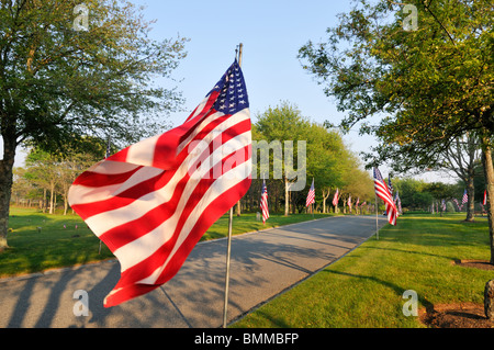 American Flags waving on a tree lined street on Memorial Day at the Massachusetts National Cemetery in Bourne, Cape - Stock Photo