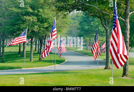 Tree lined street with American Flags on poles at the Massachusetts National Cemetery in Bourne, Massachusetts USA - Stock Photo