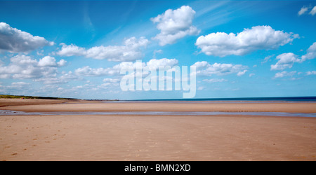 English Coast Summer - Stock Photo