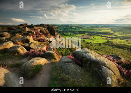 Late summer light on the heather-clad Curbar Edge in the Peak District of Derbyshire, England - Stock Photo