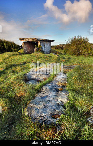 Gleninsheen wedge tomb. The Burren in north-west Clare, Ireland. - Stock Photo