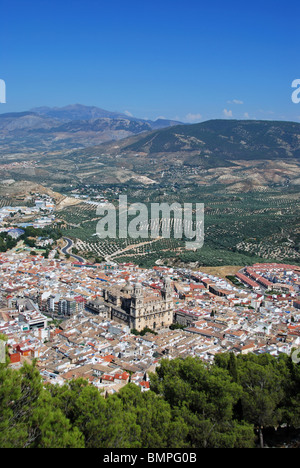 Cathedral (Santa Iglesia Catedral - Museo Catedralicio) with views over the surrounding city rooftops, - Stock Photo