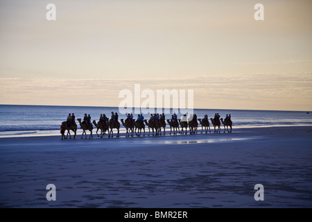 A camel ride on Cable Beach at either sunrise or sunset is a visitor tradition in Broome Western Australia - Stock Photo