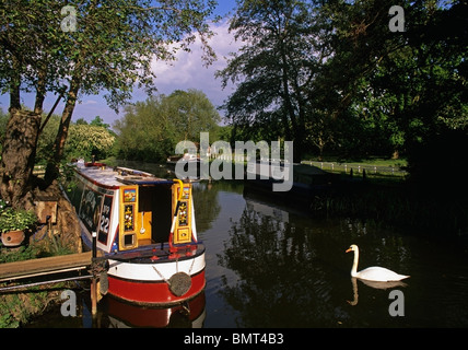 Narrow boats on the River Stort at Pardon Mill on the western side of Harlow Essex - Stock Photo