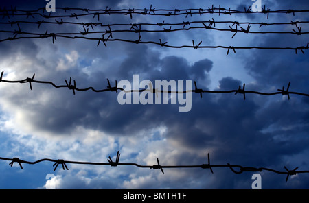 Barbed wire against the dark blue sky - Stock Photo