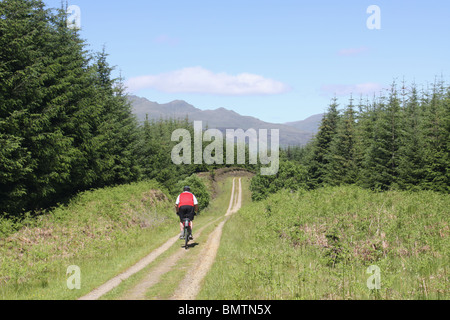 cyclist on National Cycle Route 7 in Archarn Forest near Killin Scotland  June 2010 - Stock Photo