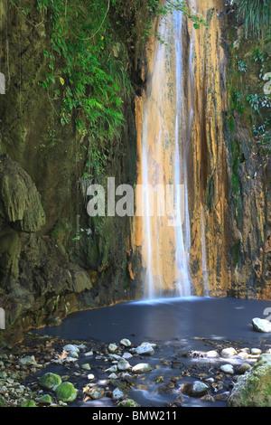 Caribbean, St Lucia, Diamond Botanical Gardens, Diamond Falls - Stock Photo
