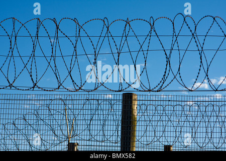 Coils of Barbed Wire Atop Prison Fence - Stock Photo