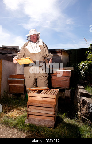 Bee keeper working on a beehive in suburban garden in UK - Stock Photo