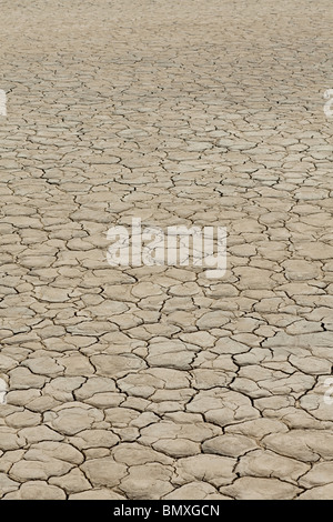 Cracked surface of dry lake bed - Stock Photo