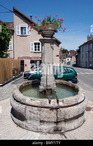 public water drinking fountain flowers pot red - Stock Photo