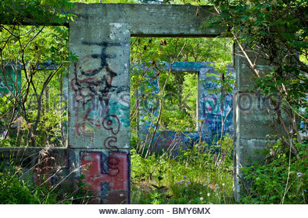 Graffiti and nature take over foundation of ruined barn on the Seaton Hiking Trail in Pickering Ontario Canada - Stock Photo