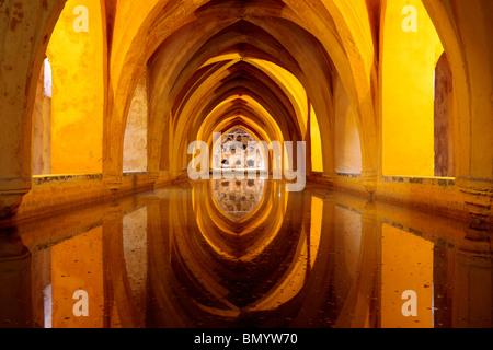 The rainwater pool of Dona Maria de Padilla in the Reales Alcazares Seville - Stock Photo