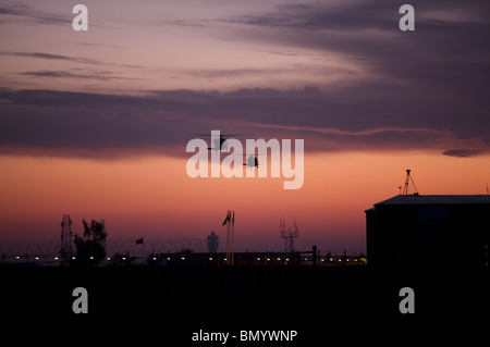 A pair of UH-60 Black Hawk helicopters approach their landing during sunset at Victory Pad, Baghdad, Iraq. - Stock Photo